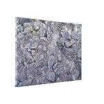 Superficie de la roca de la lava lona estirada galerias
