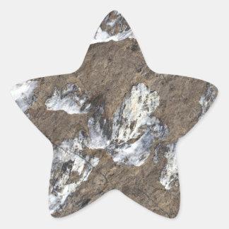 Superficie de la roca pegatina en forma de estrella