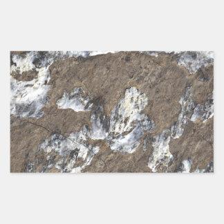 Superficie de la roca pegatina rectangular