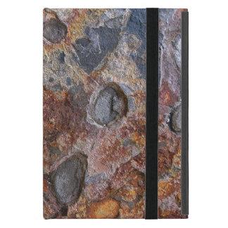 Superficie de la roca sedimentaria iPad mini cobertura