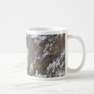 Superficie de la roca taza clásica