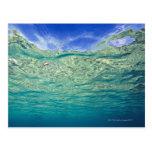 Superficie del mar tópico claro visto de postal