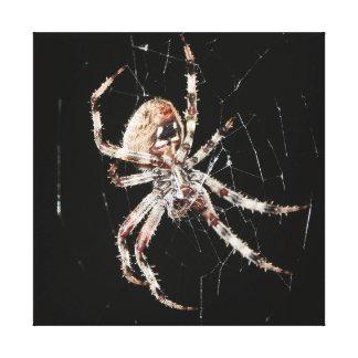 Superficie inferior de la araña de granero lona envuelta para galerias
