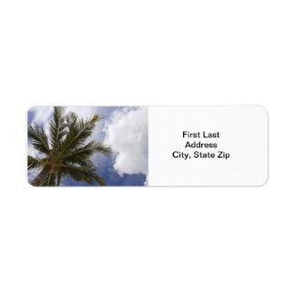 Superficie inferior de la palmera etiquetas de remite