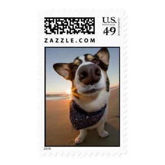 SuperHero Postage Stamps
