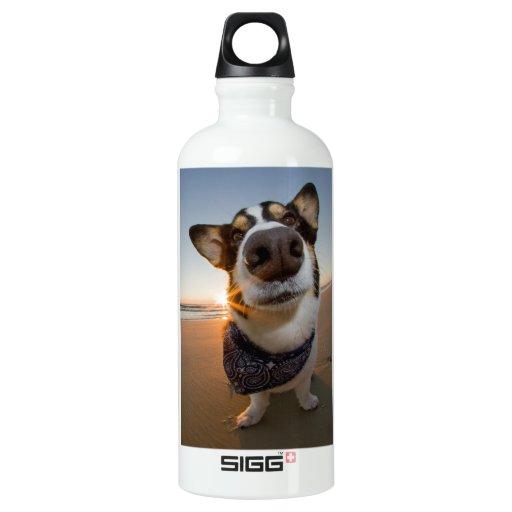 SuperHero SIGG Traveler 0.6L Water Bottle