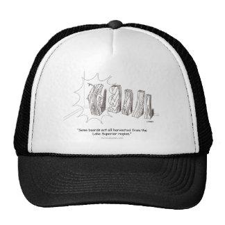 Superior Cartoon Hat
