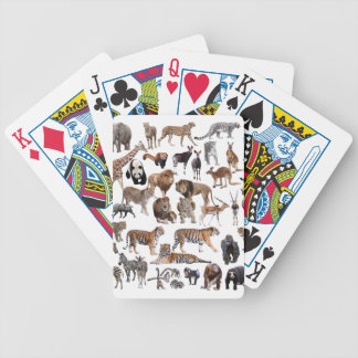 Superior product of animal of the world bicycle playing cards