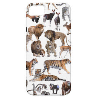 Superior product of animal of the world iPhone SE/5/5s case