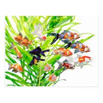 Superior product of goldfish postcard