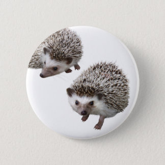 Superior product of porcupine pinback button