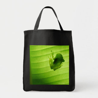 Superior product of silhouette of amagaeru