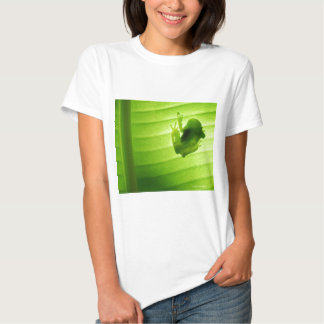 Superior product of silhouette of amagaeru t-shirt