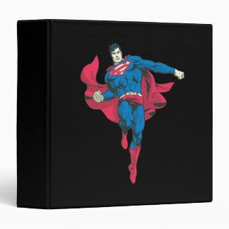 Superman 89 binder