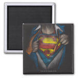 Superman Chest Sketch 2 Magnets