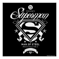Superman Coat of Arms Poster
