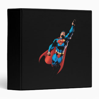 Superman Soars Vinyl Binder