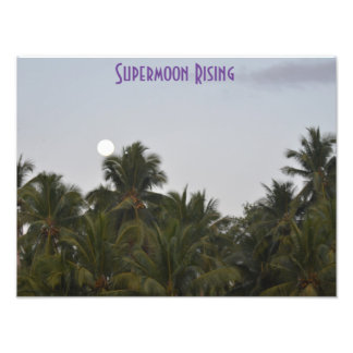 Supermoon Rising Dusk Coconuts Photo Enlargement