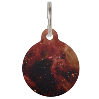 Supernova 1987A in the Large Magellanic Cloud Pet Name Tag