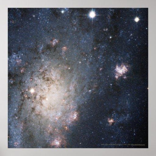 Supernova brillante en NGC 2403 12x12 (13x13) Póster