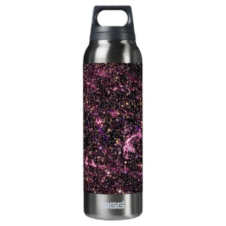 Supernova Remnant LMC N132D 16 Oz Insulated SIGG Thermos Water Bottle