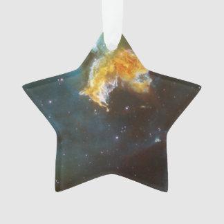 Supernova Remnant N 63A Menagerie