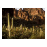 Superstition Mountain Print
