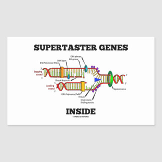 Supertaster Genes Inside DNA Replication Sticker