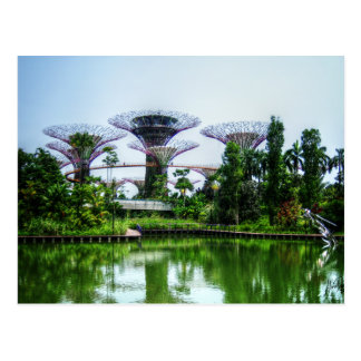 Supertrees and dragonfly lake postcard