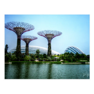 Supertrees greenhouse and dragonfly lake postcard