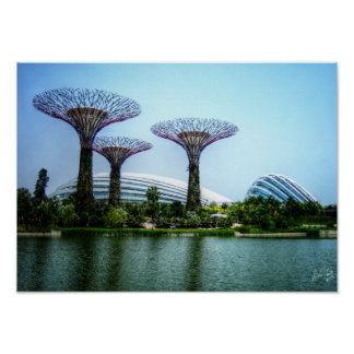 Supertrees greenhouse and dragonfly lake poster