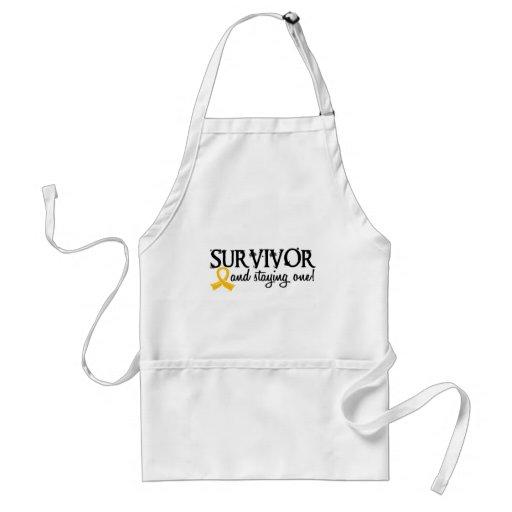 Superviviente 18 del cáncer de la niñez delantales