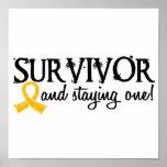 Superviviente 18 del cáncer de la niñez posters