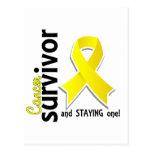 Superviviente 19 del cáncer de vejiga postales