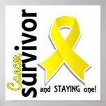 Superviviente 19 del cáncer de vejiga posters