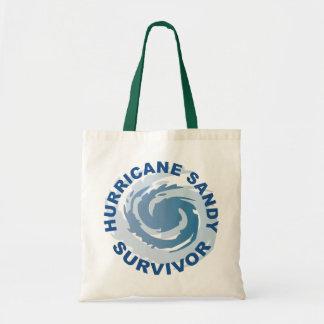 Superviviente 2012 de Sandy del huracán Bolsas Lienzo