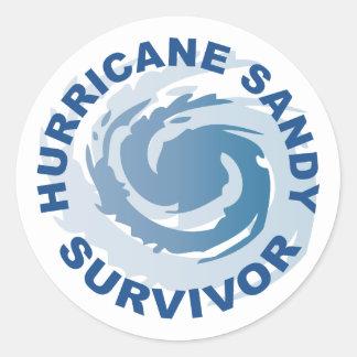 Superviviente 2012 de Sandy del huracán Pegatina Redonda