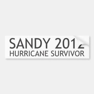 Superviviente 2012 del huracán de Sandy Pegatina Para Auto