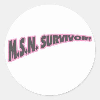 Superviviente de MSN en rosa Pegatinas Redondas