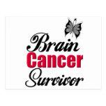 Superviviente del cáncer de cerebro tarjetas postales