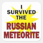 Superviviente del meteorito colcomanias cuadradas