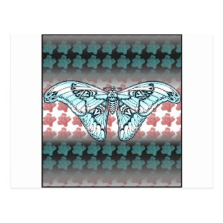 Suposición de la mosca postales