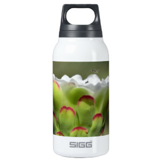 Supper Club Insulated Water Bottle