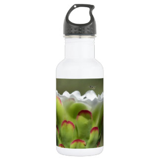Supper Club Stainless Steel Water Bottle