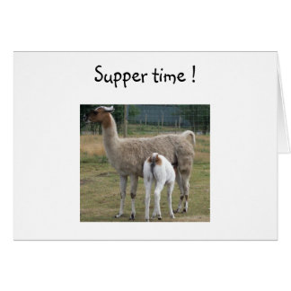 Suppertime Card