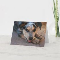 Support and Encouragement - Dog Lover Animal Humor Card