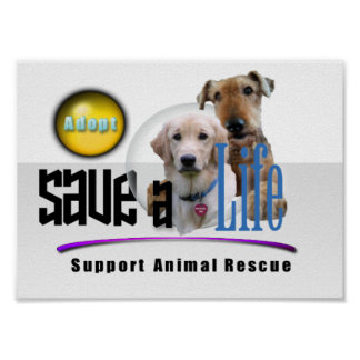 SUPPORT ANIMAL RESCUE - ADOPT! PRINT