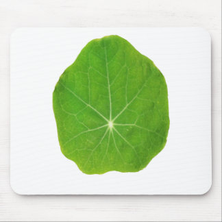 Support Green, Save the Planet Mouse Pad
