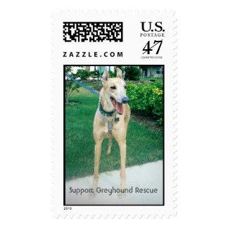 Support Greyhound Rescue Postage
