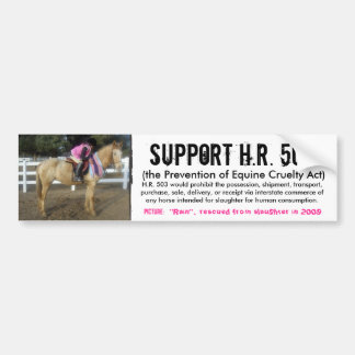 Support H.R. 503 - Prevention of Cruelty to Horses Car Bumper Sticker